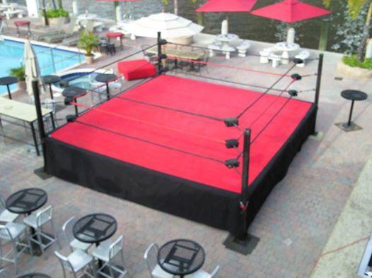 Pro Wrestling Ring 16 Style 1