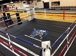Lowboy Boxing Ring 16'